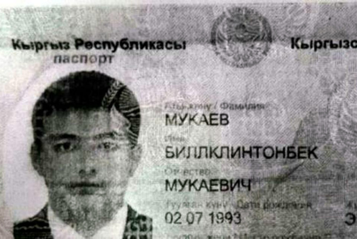 Самые прикольные паспорта и документы (77 фото)