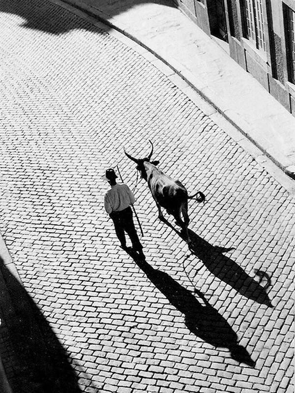 Необычные черно-белые фотографии (200 фото)